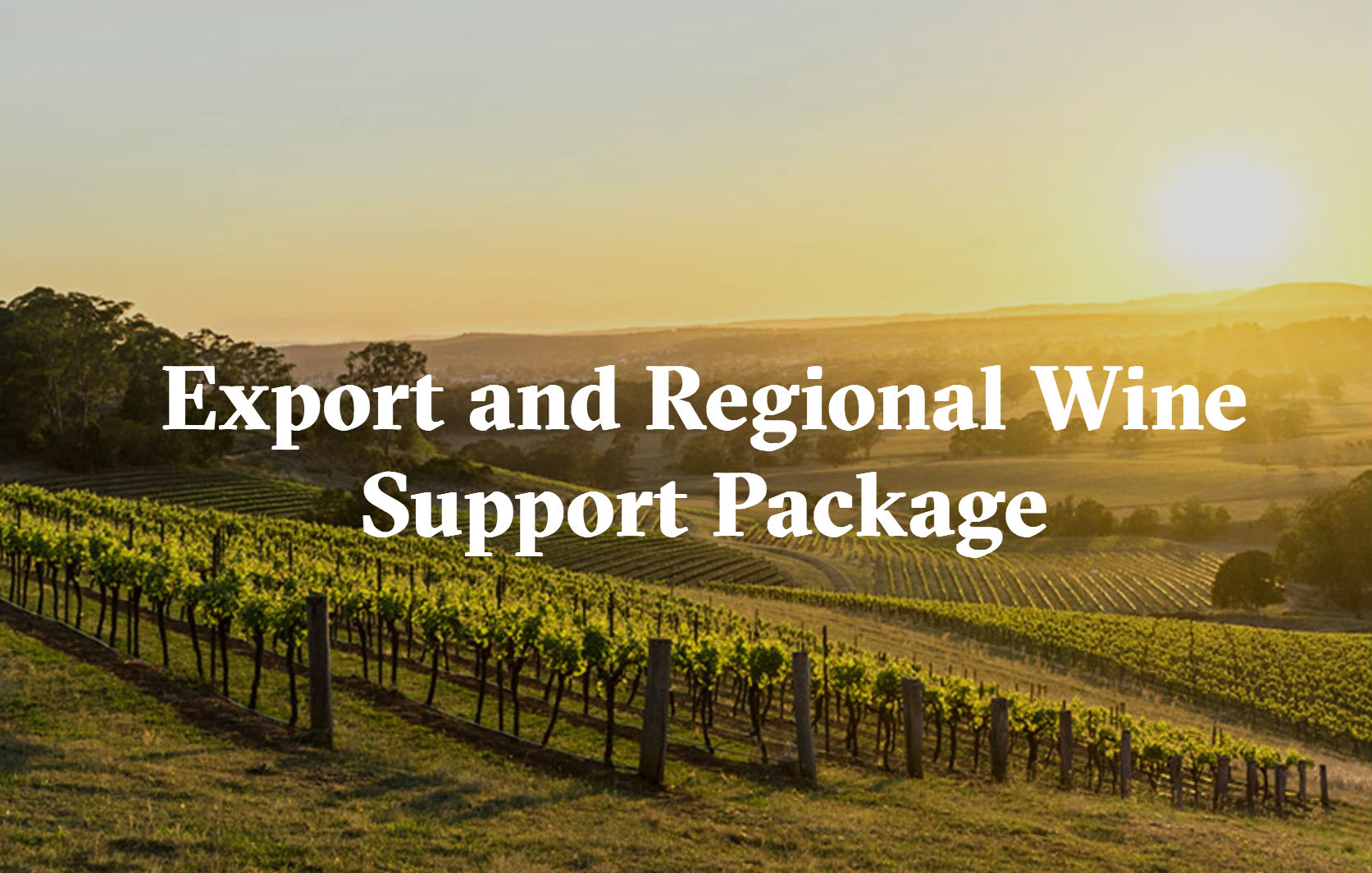 wine tourism Wine regions are attracting increasing numbers of tourists through tours, wine festivals and events, and winery, restaurant and cellar door experiences using a host.